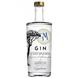 GIN GM 70 CL 40°